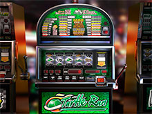 Turtle Run Slot Machine - Play for Free With No Download