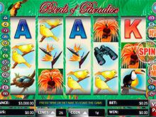 Irish Love Slot Machine